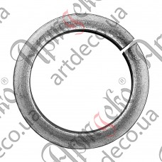 Ring 170x12 - picture